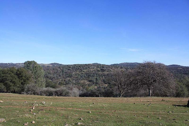 ranch6 (8)